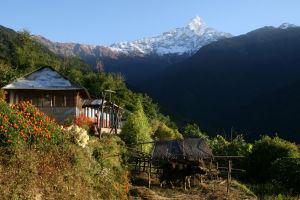 Nepal - Deurali, Annapurna trek