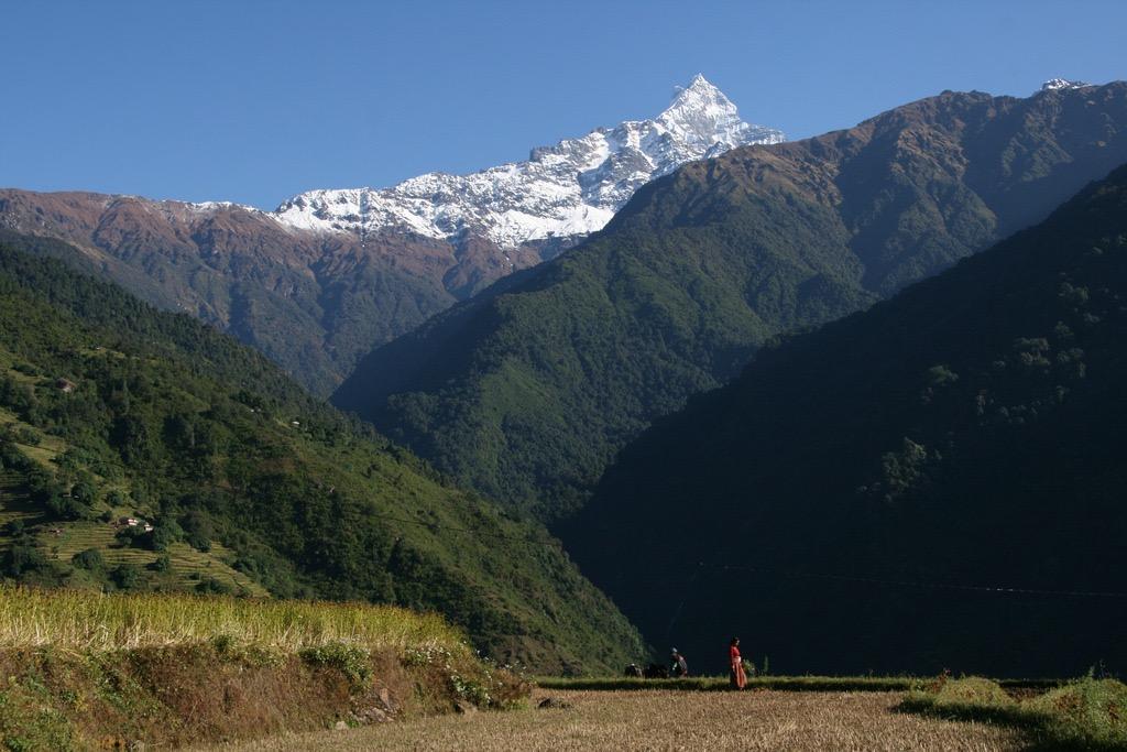 Fish Tail - Mardi Himal trek
