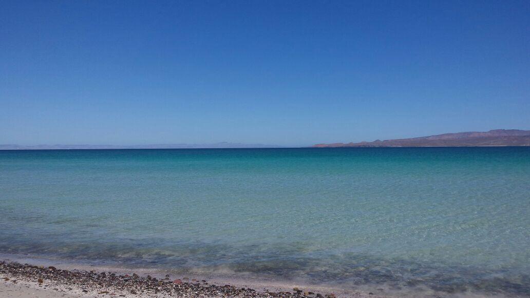Mexico - Baja California - Isla Espiritu Santo